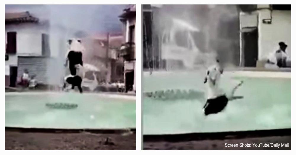 dog-in-fountain-1
