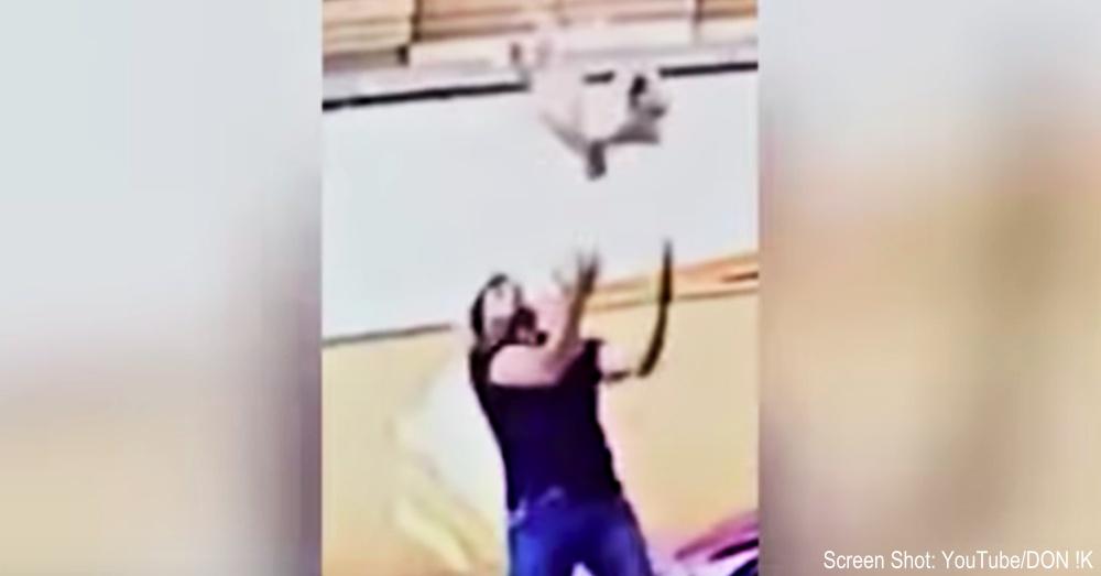 falling-dog-saved-1