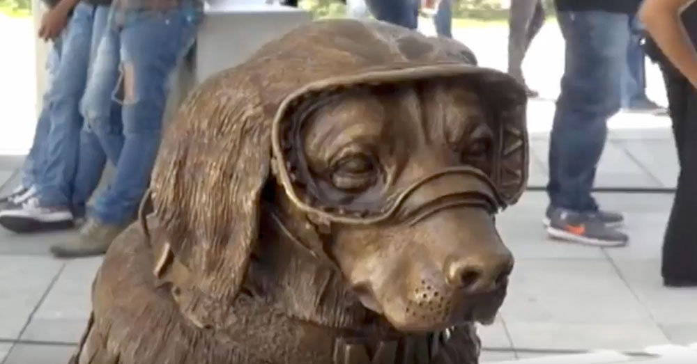 Source: YouTube/Despierta Veracruz Frida is memorialized forever in the bronze statue.
