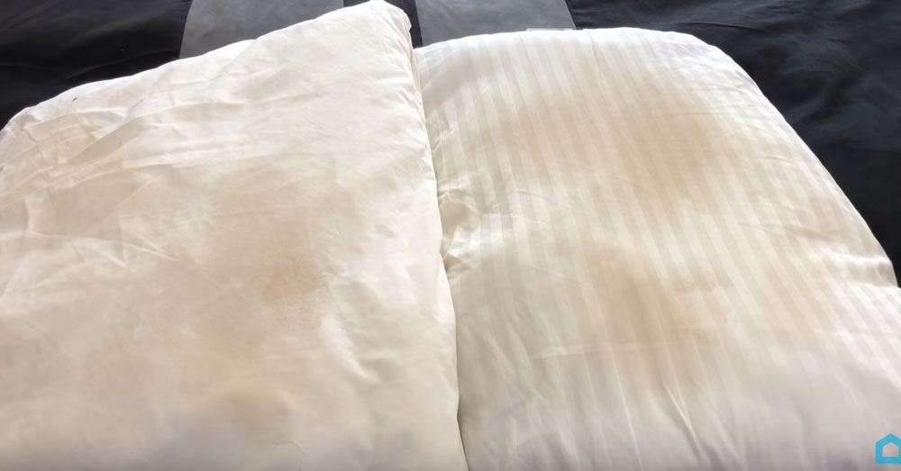 gross pillow 1