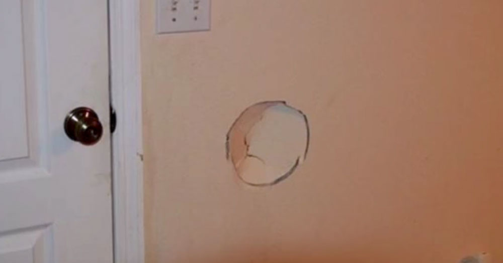 Source: YouTube/Daytona Beach News-Journal Archer threw Ponce into this wall, fatally injuring the dog.