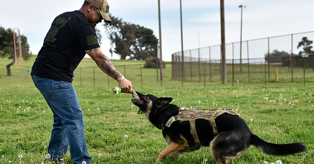 Source: U.S. Air Force Retired Tech. Sgt. Brandon Jones and his service dog, Apache, play a friendly game of tug-of-war at Travis Air Force Base, Calif.