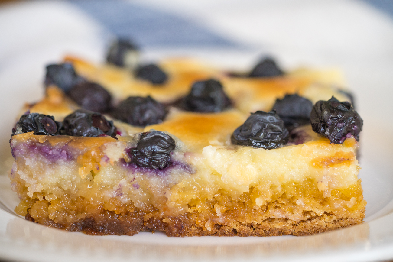 Blueberry Gooey Butter Cake Horizontal (10 of 12)