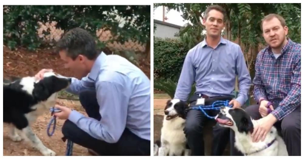 Screen Shots: Facebook/Houston Humane Society