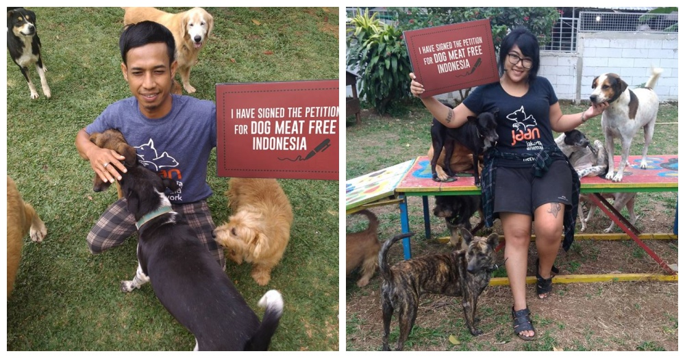 Photos: Facebook/Dog Meat Free Indonesia