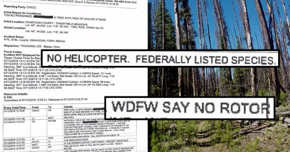 Source: YouTube/KREM2 The state Fish and Wildlife department demanded that no helicopters be used in the rescue, though the woman was located deep within the wilderness.