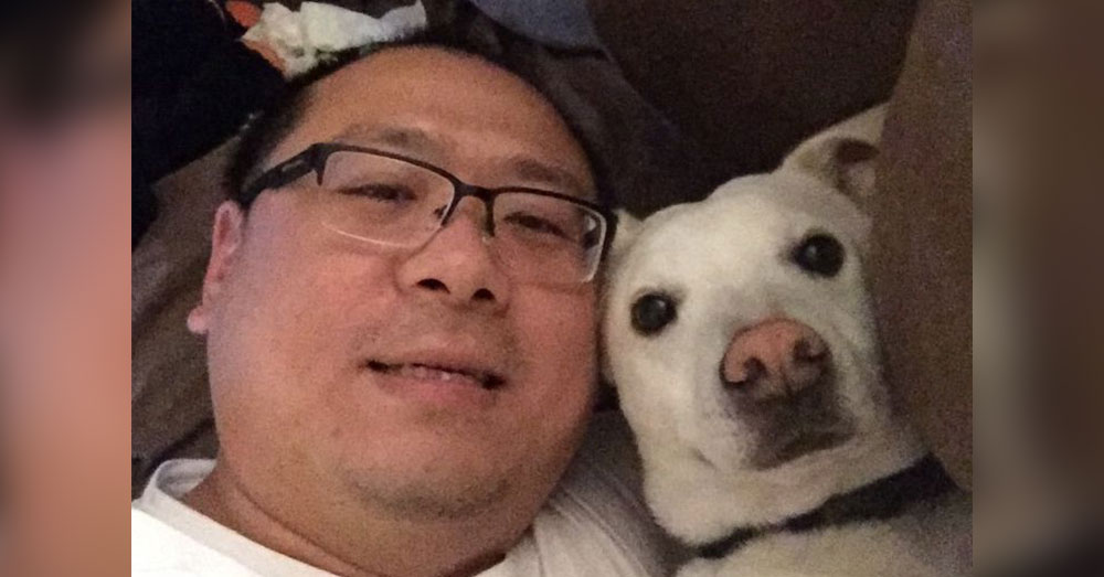 Source: GoFundMe Tony Wang had just bought Moses' favorite treat when he heard his dog had been euthanized by mistake.