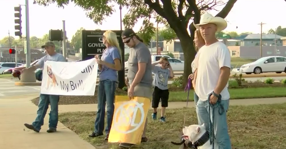 Source: YouTube/KOLR10 News Pit Bull owners and advocates protest the breed ban.