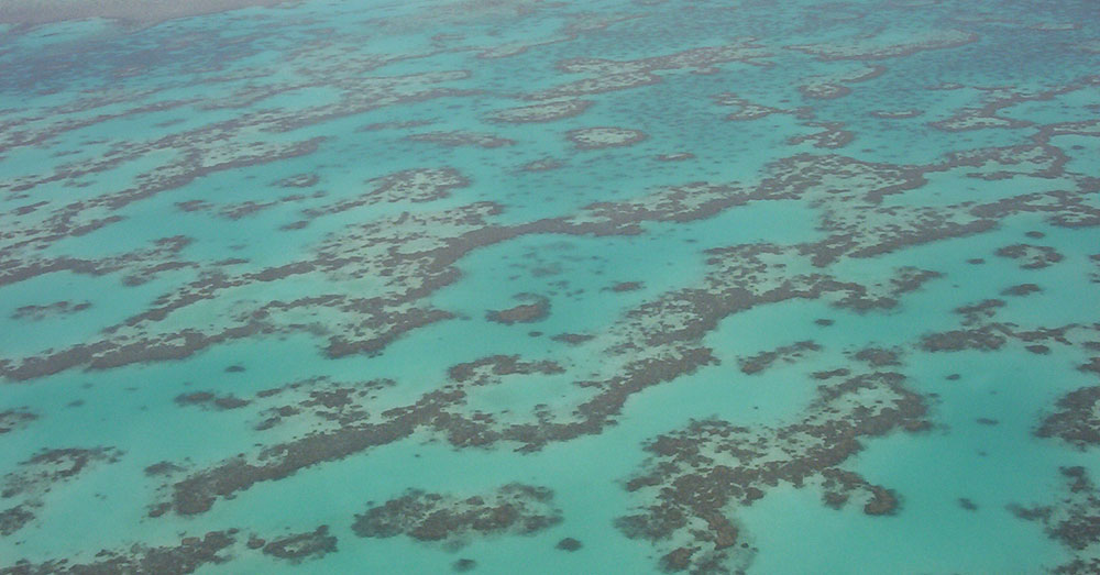 Source: Wikimedia Commons The Great Barrier Reef from above.