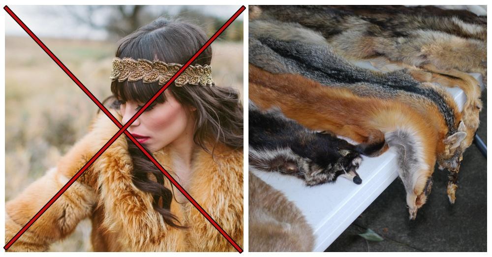burberry-bans-fur-2