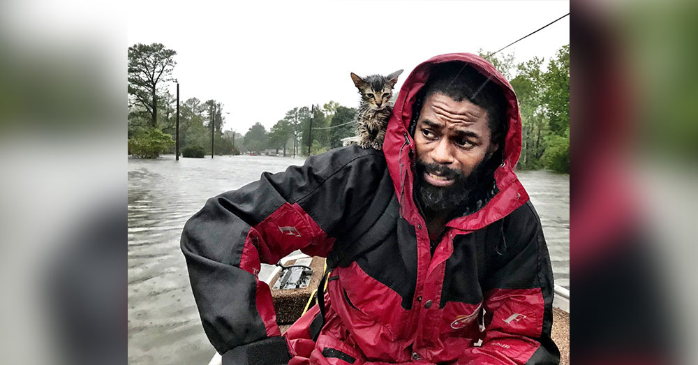 Source:Twitter/@_andrewcarter Charlotte Observer reporter Andrew Carter took this picture of Simmons, Jr. and Survivor.