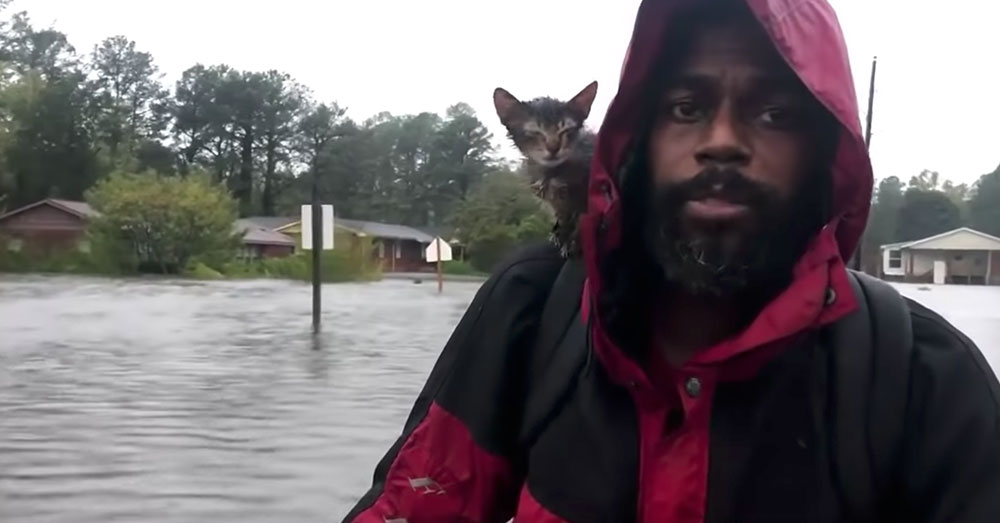 Source: YouTube/Charlotte Observer Survivor and Simmons, Jr. left New Bern and Robert Simmons, Sr. behind.