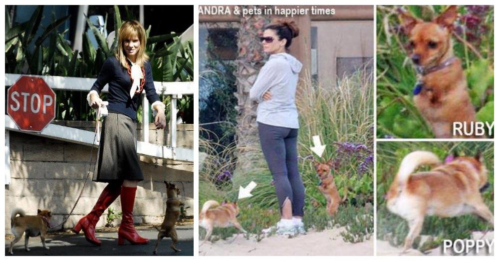 Photos: Facebook/Sandra Bullock FansClub