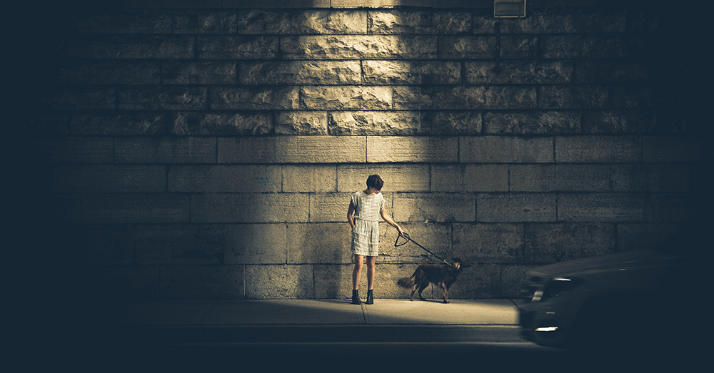 Source: Unsplash Walk your dog off a leash in China and you may see your