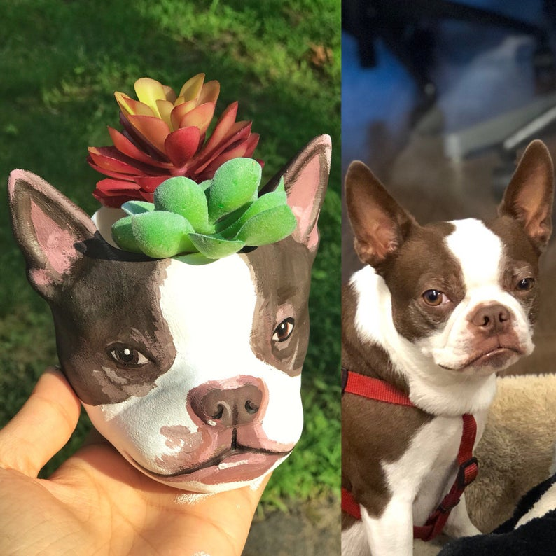 You Can Get A Custom Painted Planter That Looks Just Like Your Pet's Face
