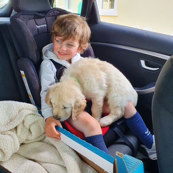 Little Boy With Nonverbal Autism Breaks Into Huge Smile When He's Given A New Puppy