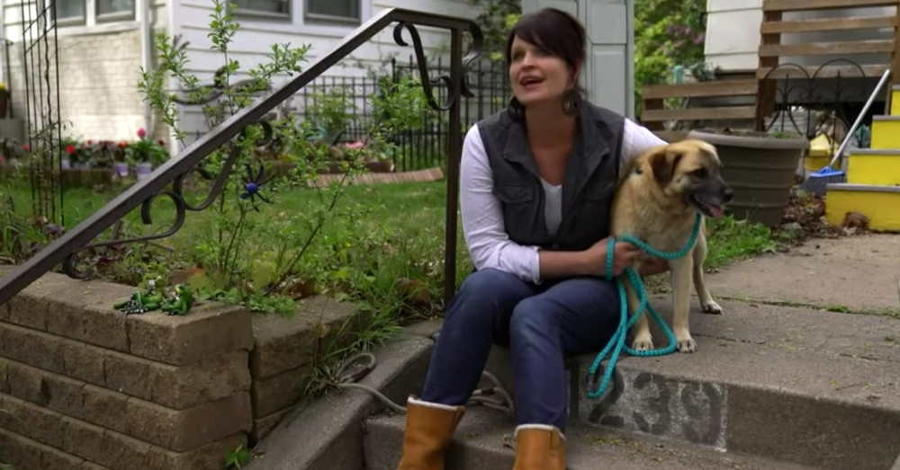 Rescued Dog Walks For 97 Days To Find Foster Mom