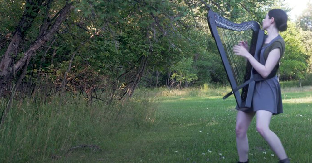 The harpist was startled by the deer as it jumped into the tall grass.