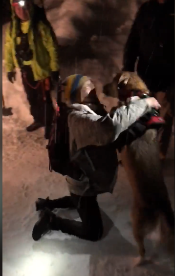 Owner Reunites With Her Dog That Was Rescued From An Avalanche