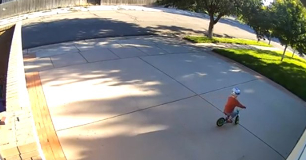 Every day, the boy rode his bike on the man's driveway.