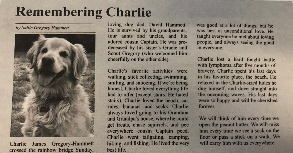 Woman's Heartfelt Obituary To Deceased Dog Goes Viral On Twitter