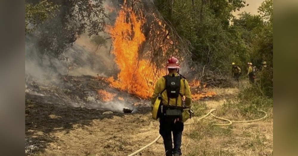 The El Dorado wildfire was started during a gender reveal party.