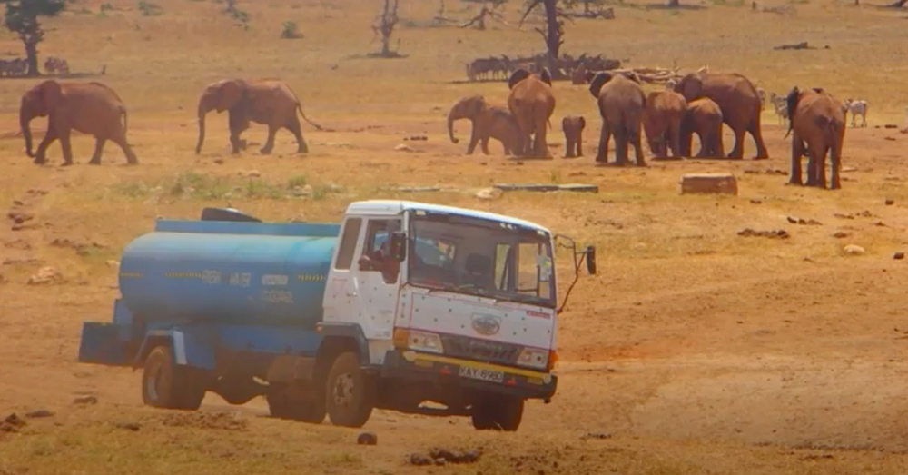 Mwalua's truck can carry 3,000 gallons of water, which he delivers to regional water holes.