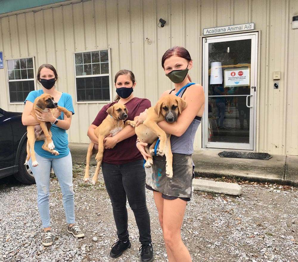 Acadiana Animal Aid is one of the largest animal transport services in Louisiana.
