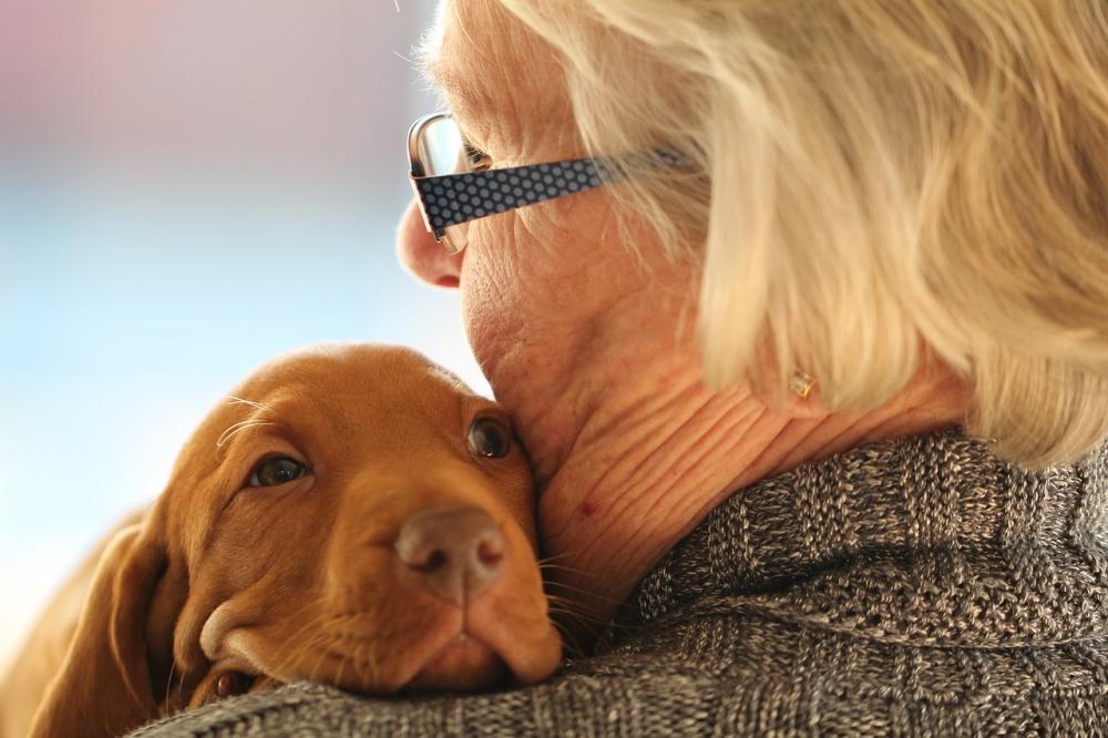 10 Best Emotional Support Dog Breeds
