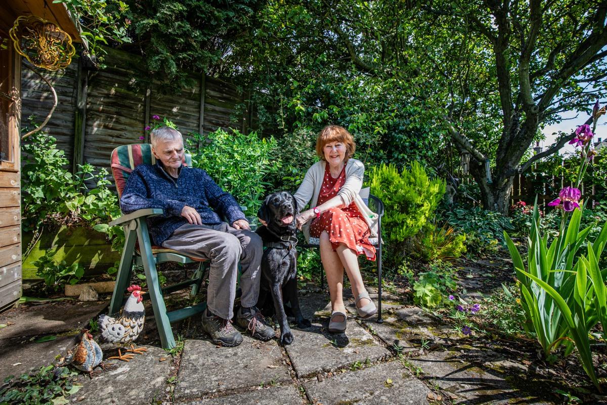dementia dog assistance alzheimer's