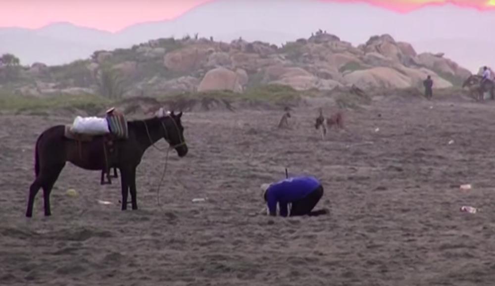 Pheasey buries a fake egg on a beach.