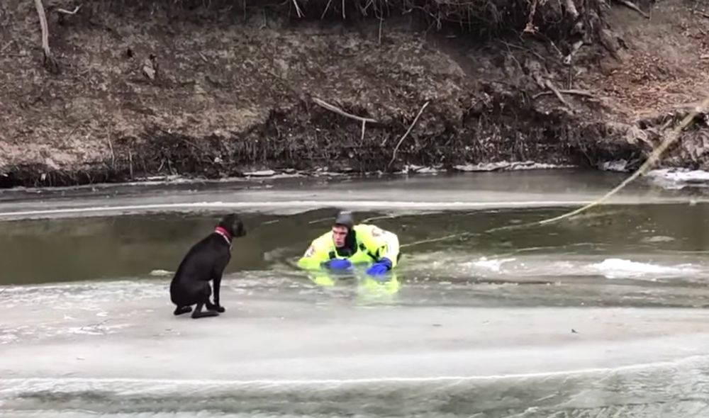 In a water suit, one firefighter nears the ice.