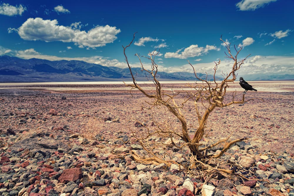 Water scarcity will drive its price up in coming years.