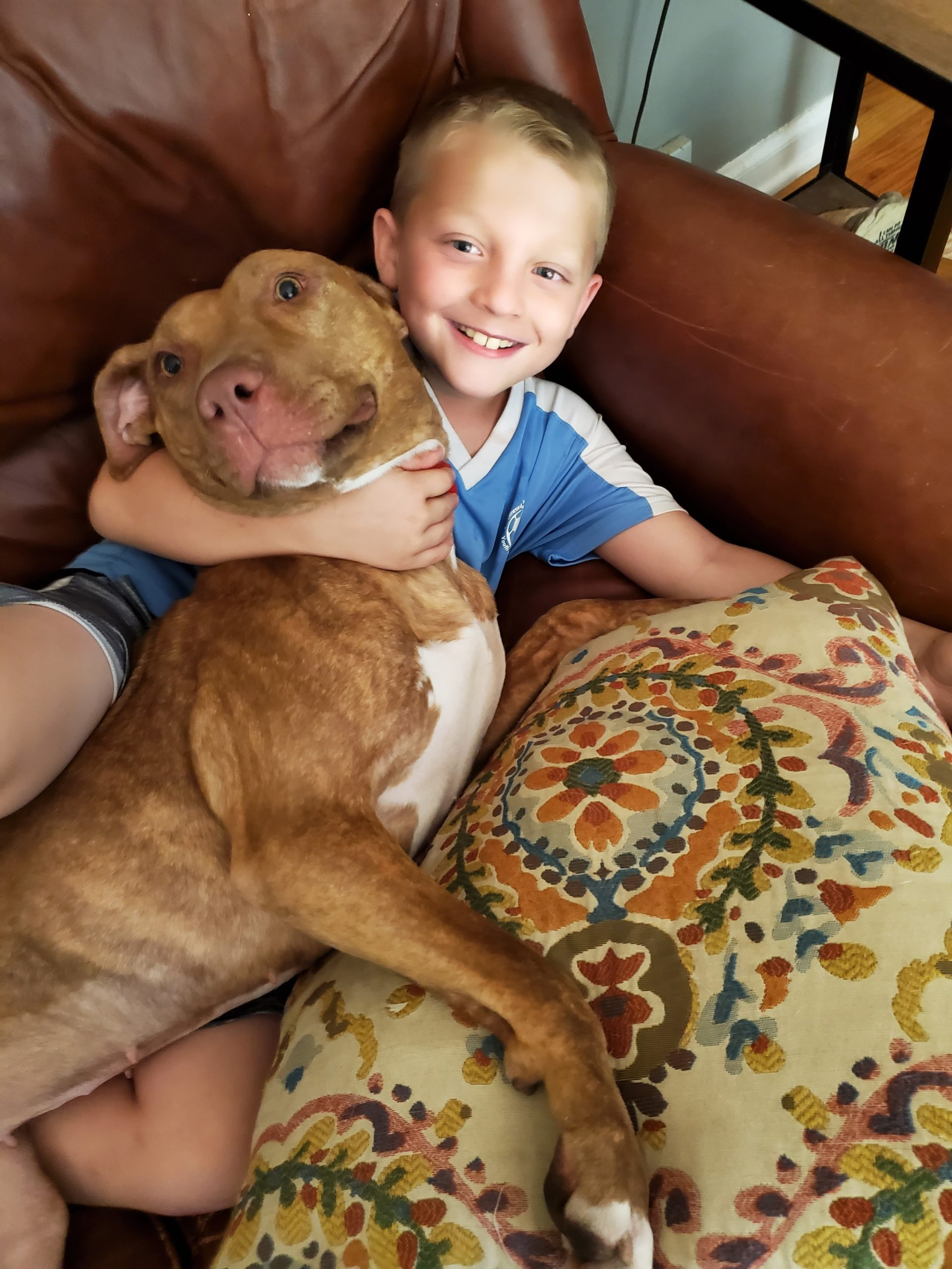 rescue dog forever home