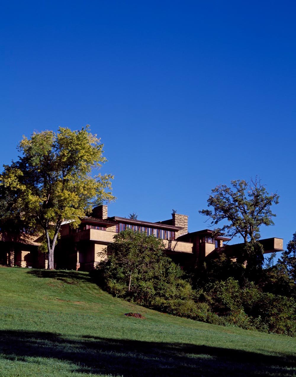 The 20th-Century Architecture of Frank Lloyd Wright was designated a World Heritage Site in 2019.