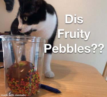 Cereal-Obsessed Cat Receives A Custom Fruity Pebbles Box With His Face On It