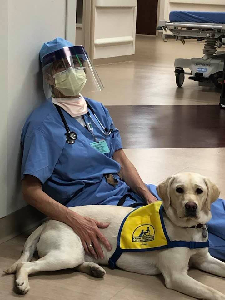 service dog Wynn and Dr. Ryan sit on the floor of the hospital