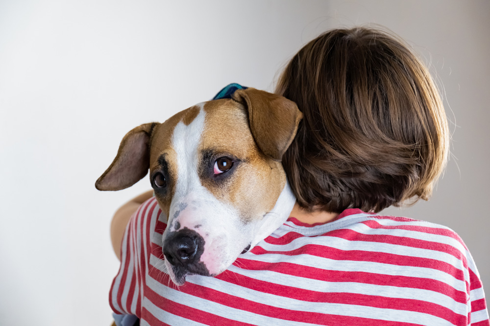Adoptable pets should not be killed because they are inconvenient.
