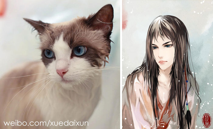 Chinese Artist Takes Pets And Reimagines Them As Humans