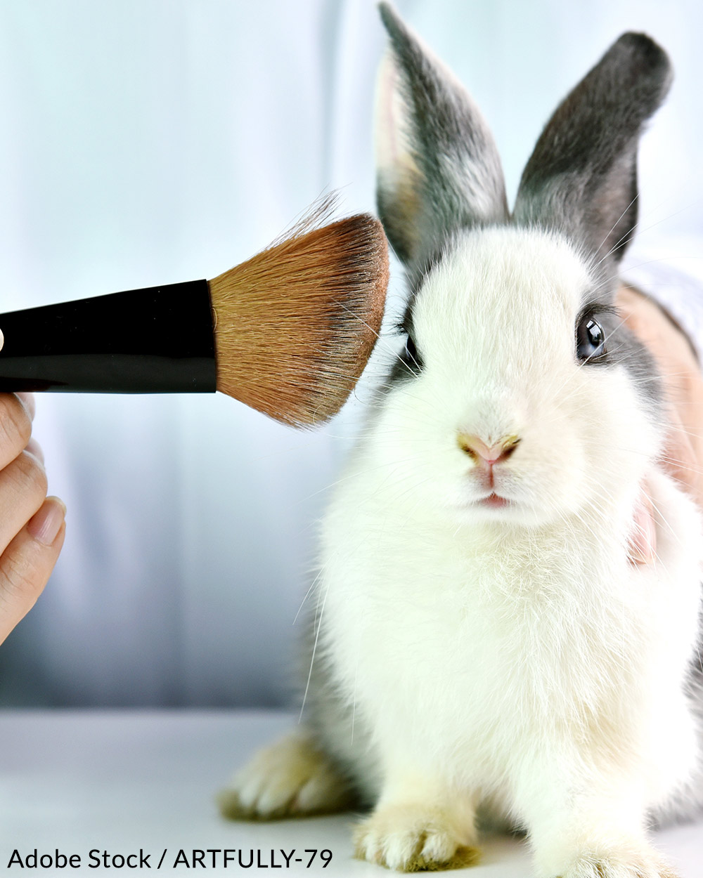 Animal testing is still required in some foreign markets.