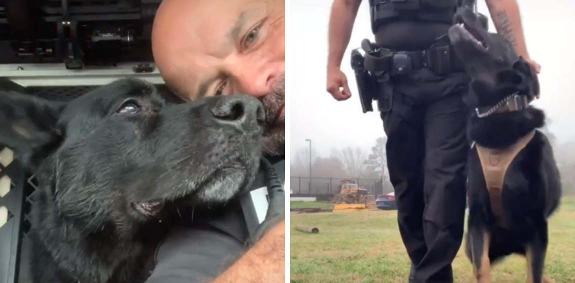 Police Dog Gets A Special Send-Off For Her Last Day On The Job