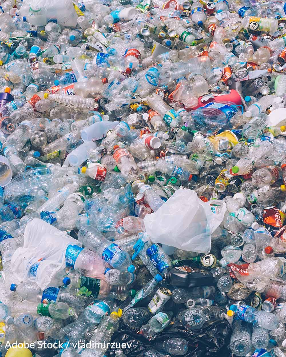 Help cut out plastic bag waste by taking the plastic bag pledge!