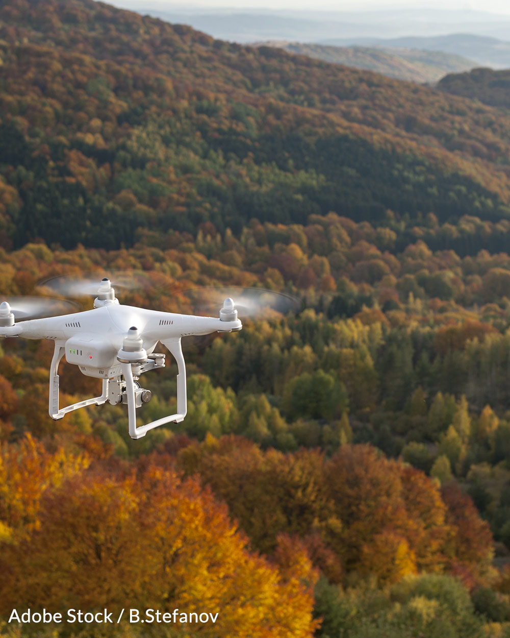 Help us minimize the damage drones present to wildlife.