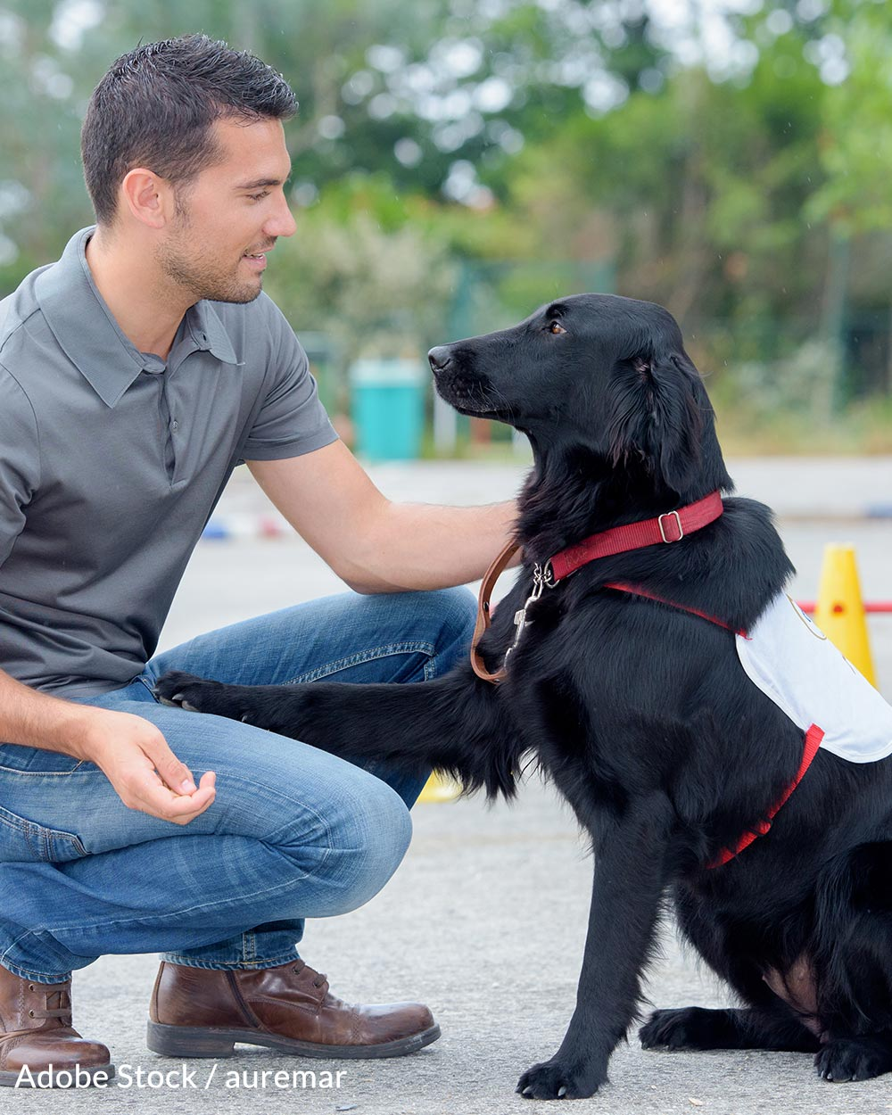 August 4 is Assistance Dog Day.