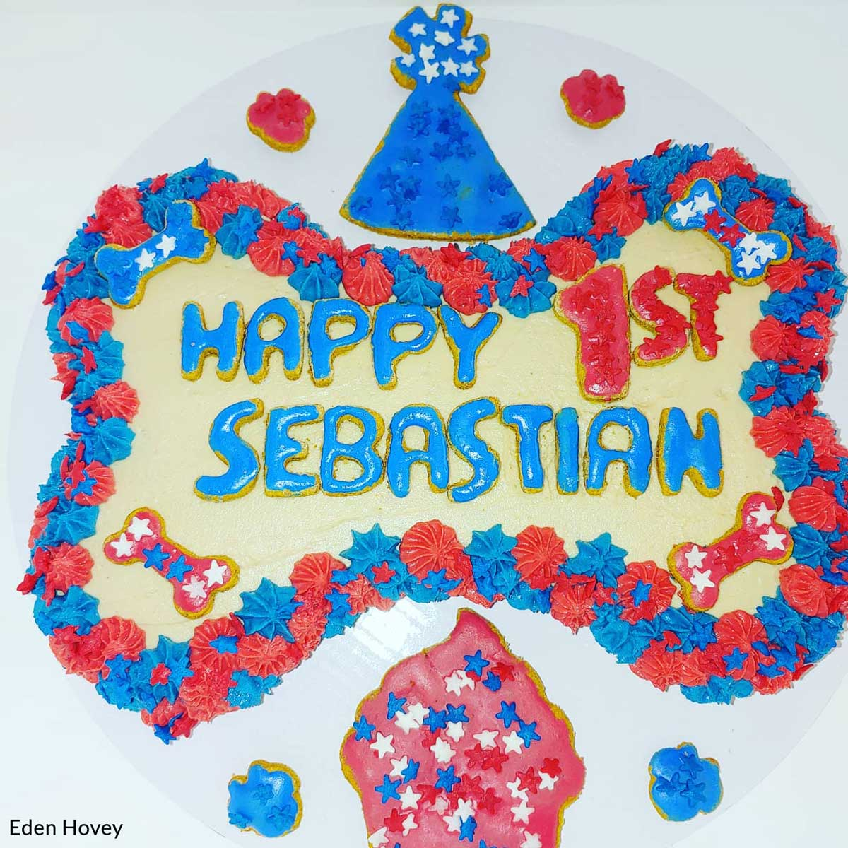 Happy 1st Sebastian!