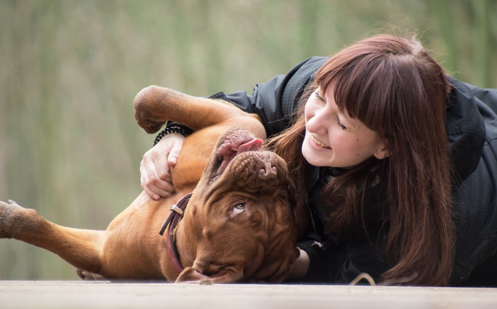7 Ways Sharing Your Bed With Your Pet Improves Your Life