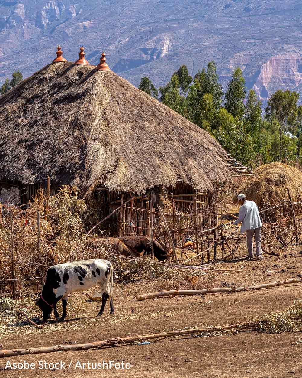 Many in Ethiopia live in extreme poverty.
