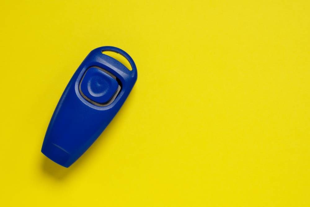 Clicker for training dogs