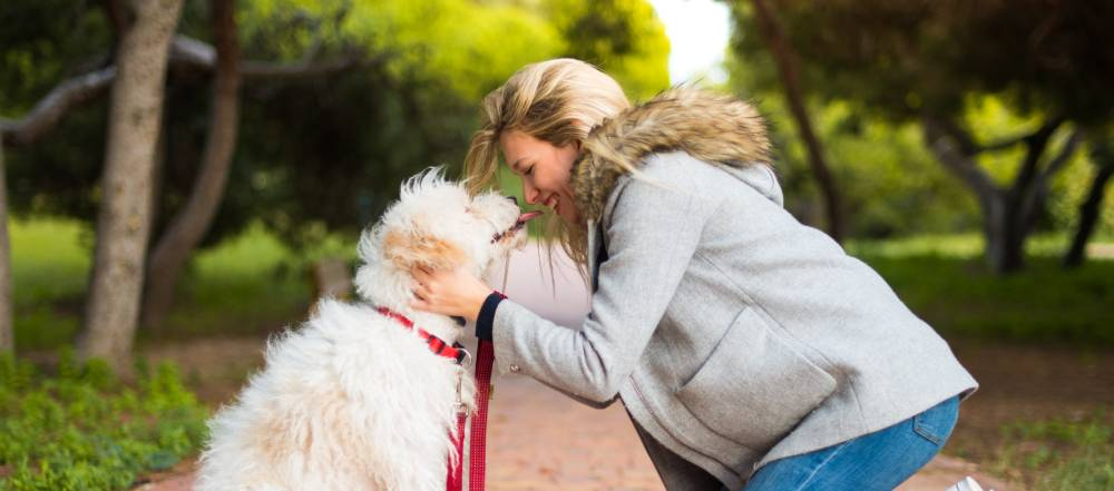 dog licking a woman's nose in park