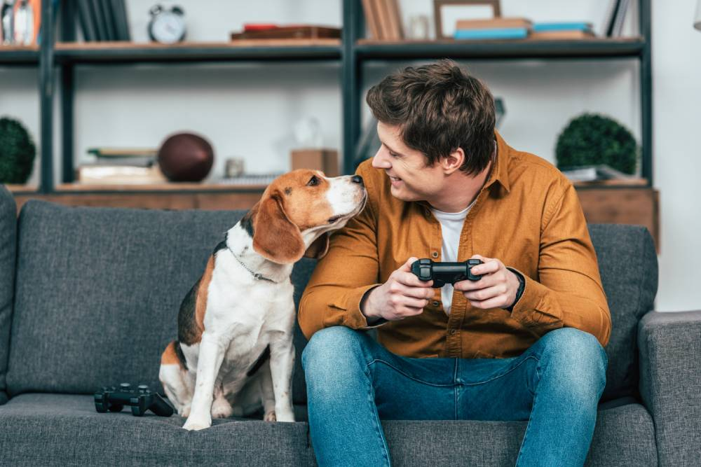 dog and man on couch playing video games